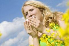 Аллергия на растения – чего мы не знали о привычных травах и цветах?