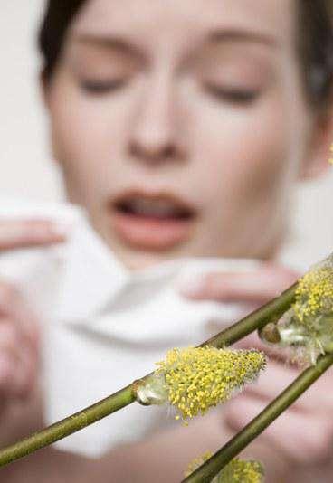 Принцип действия аллергии, ее развитие