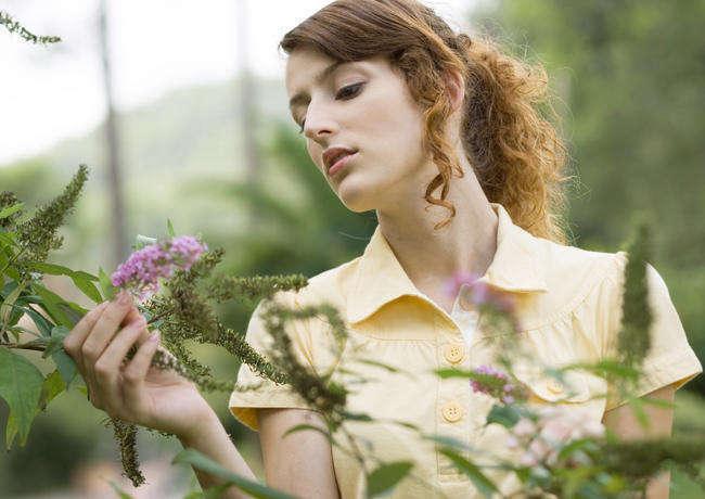 аллергия на амброзию лечение народными средствами