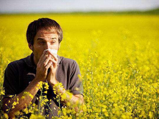 аллергия от травы на коже фото