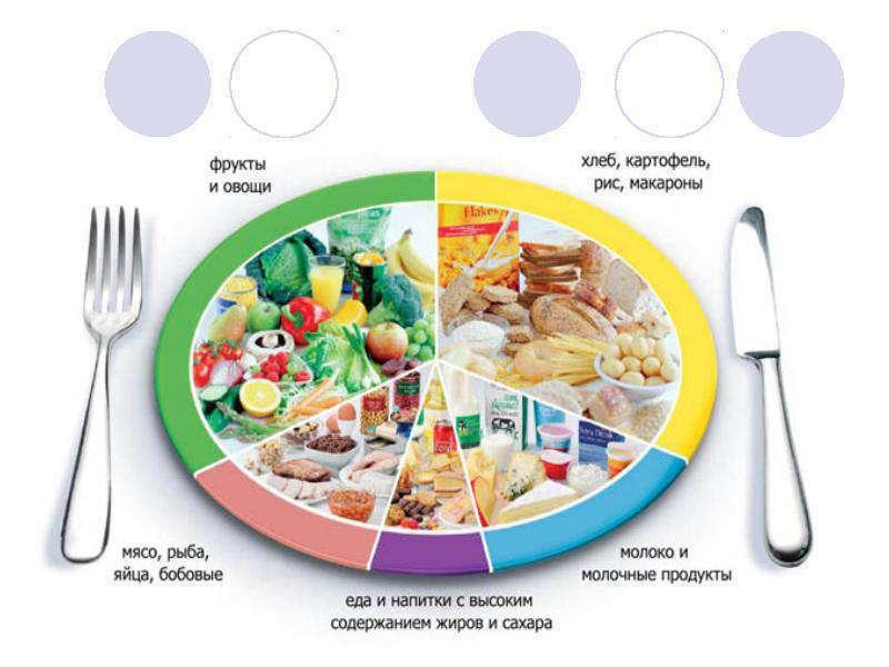 Общие правила диетического питания