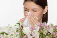 Почему появляется аллергия на пыльцу у людей?