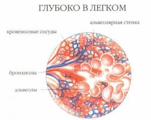Причины роста жировика на легочной ткани